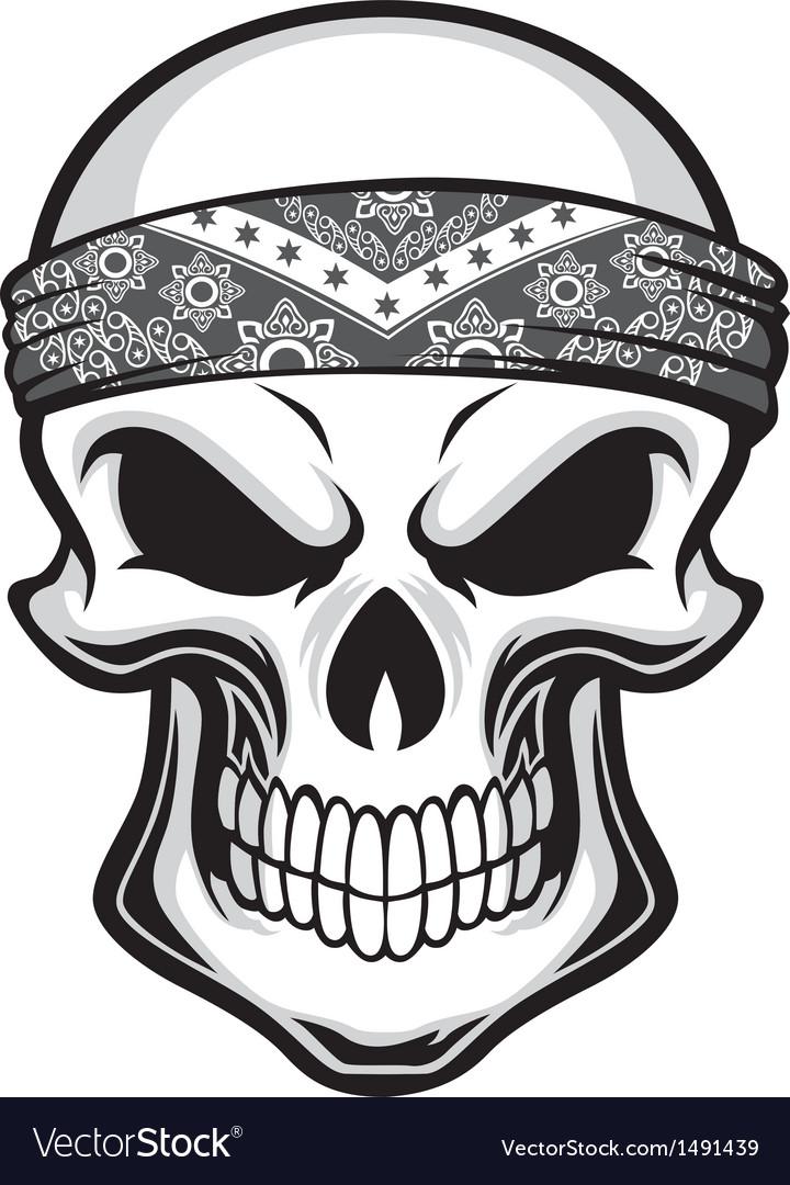 Skull wearing bandana vector