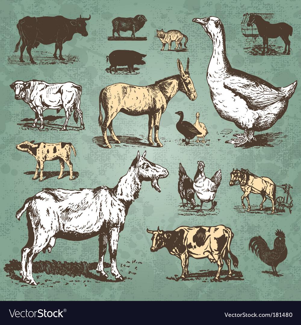 Farm animals vintage set vector