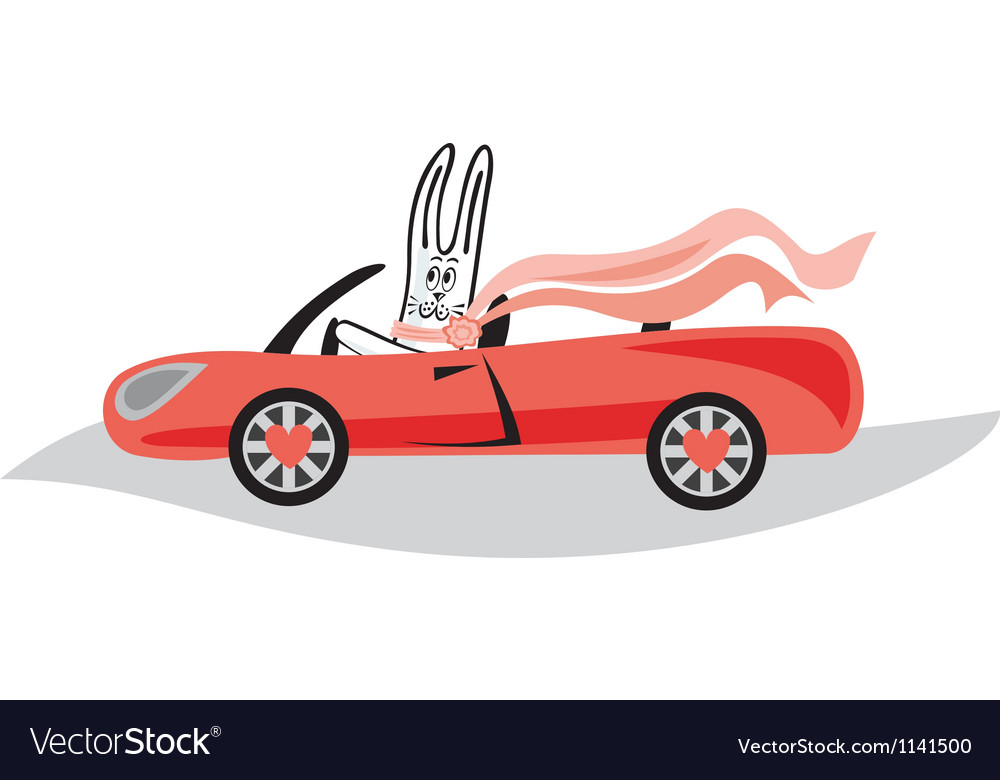 Bunny cartoon vector