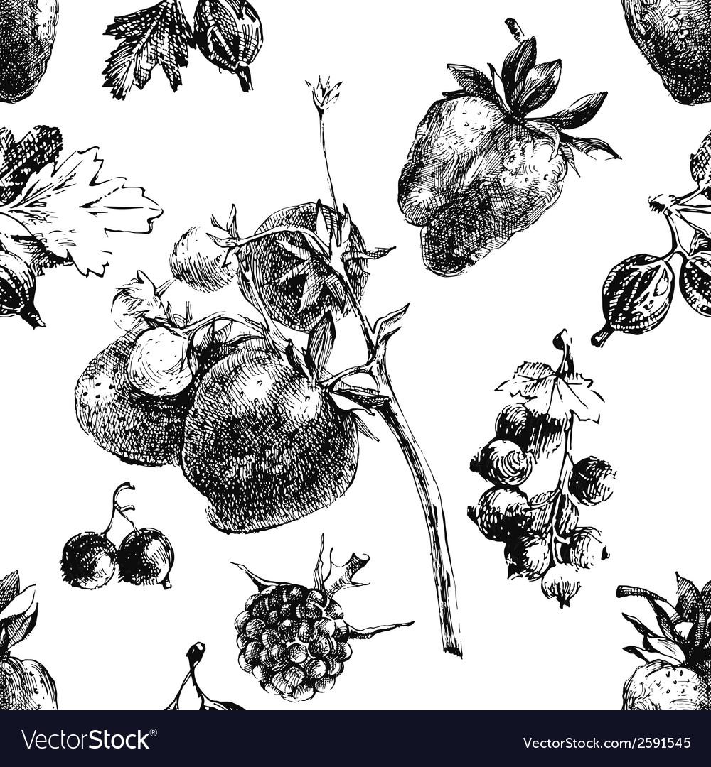 Berry seamless vector