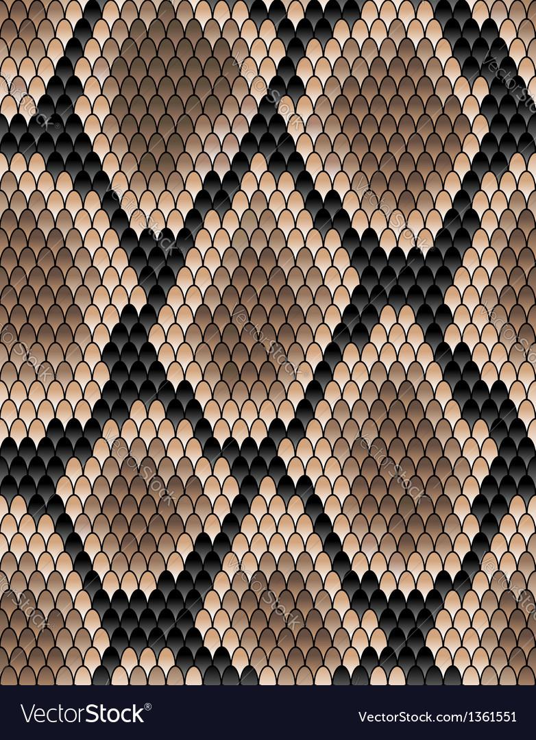 Seamless pattern of snake skin vector