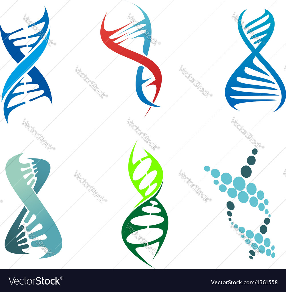 Dna and molecules vector