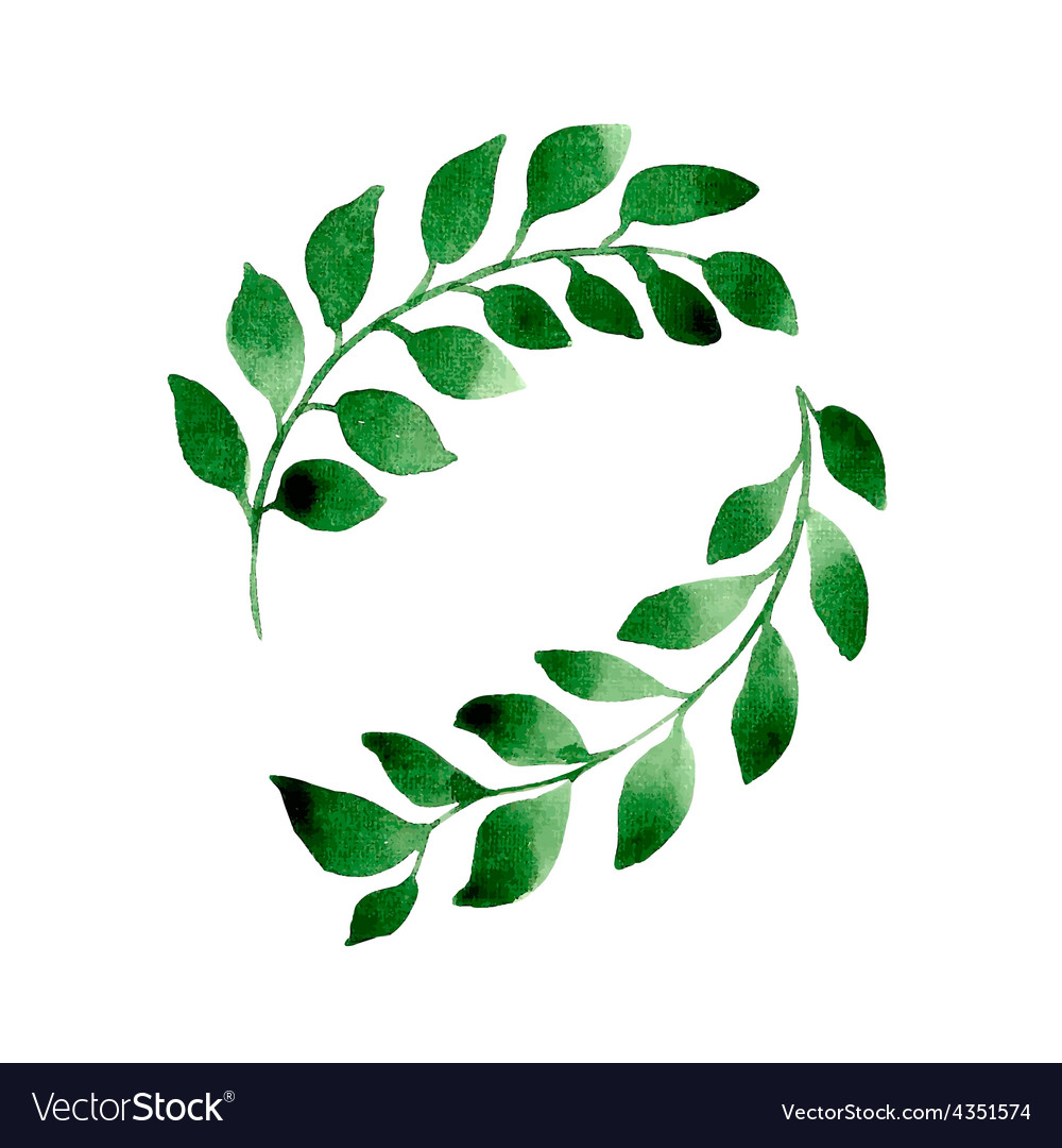 2 branches vector