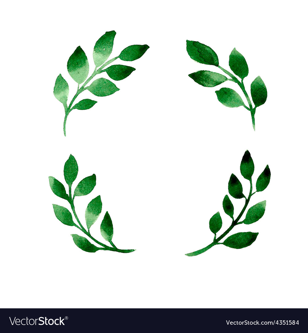 4 branches vector