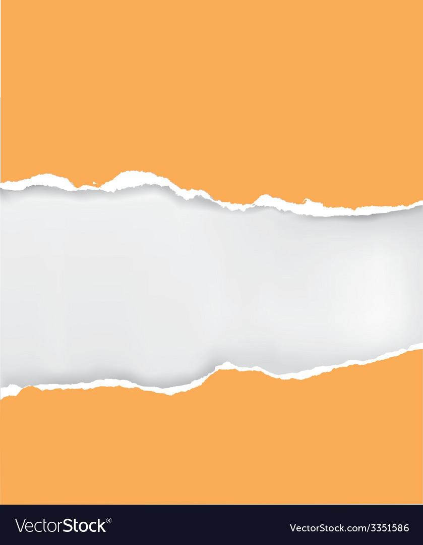 Orange ripped paper vector