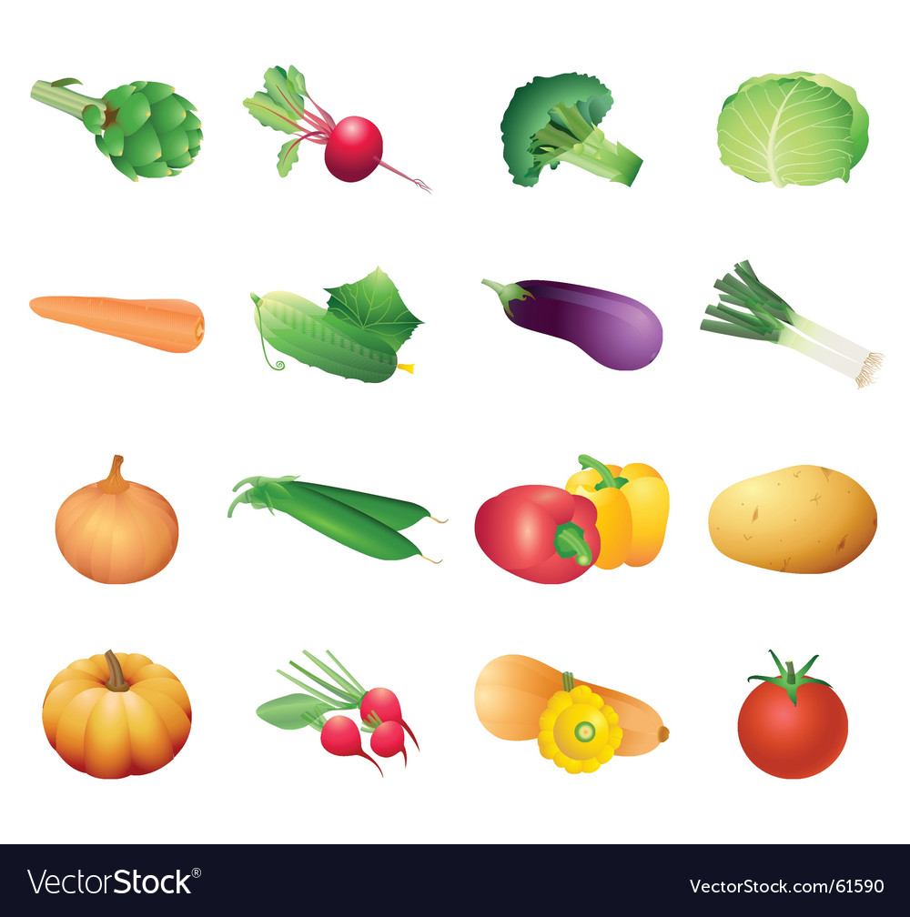 Calorie table vegetables vector