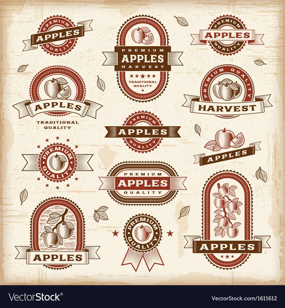Vintage apple labels set vector