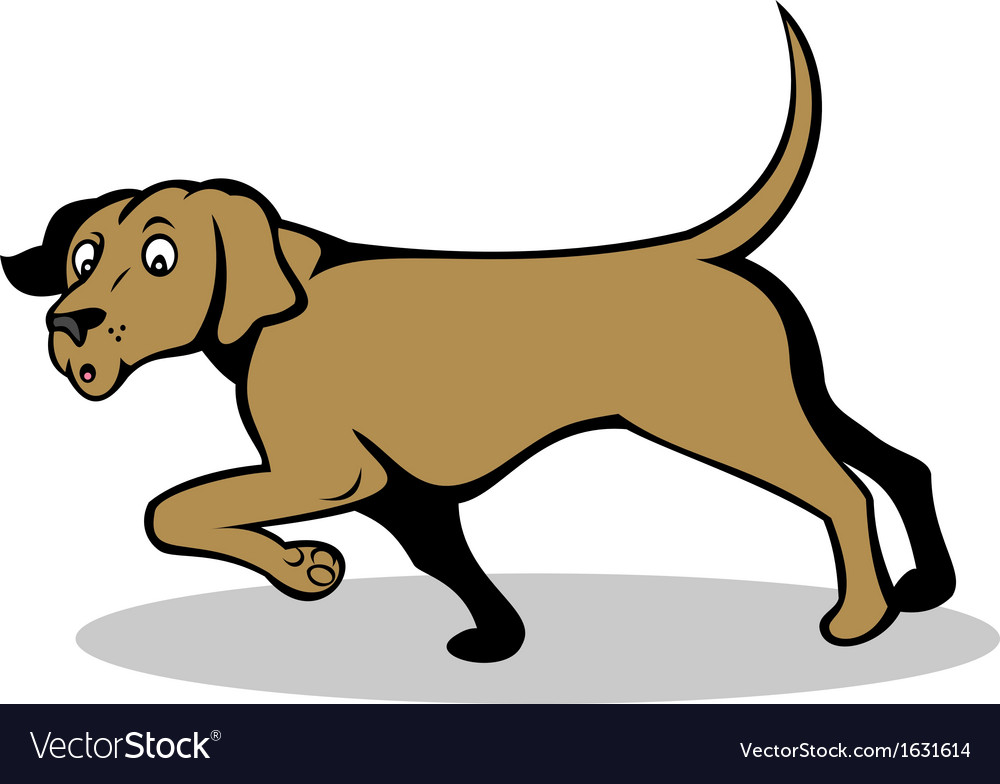Confused pointer dog vector