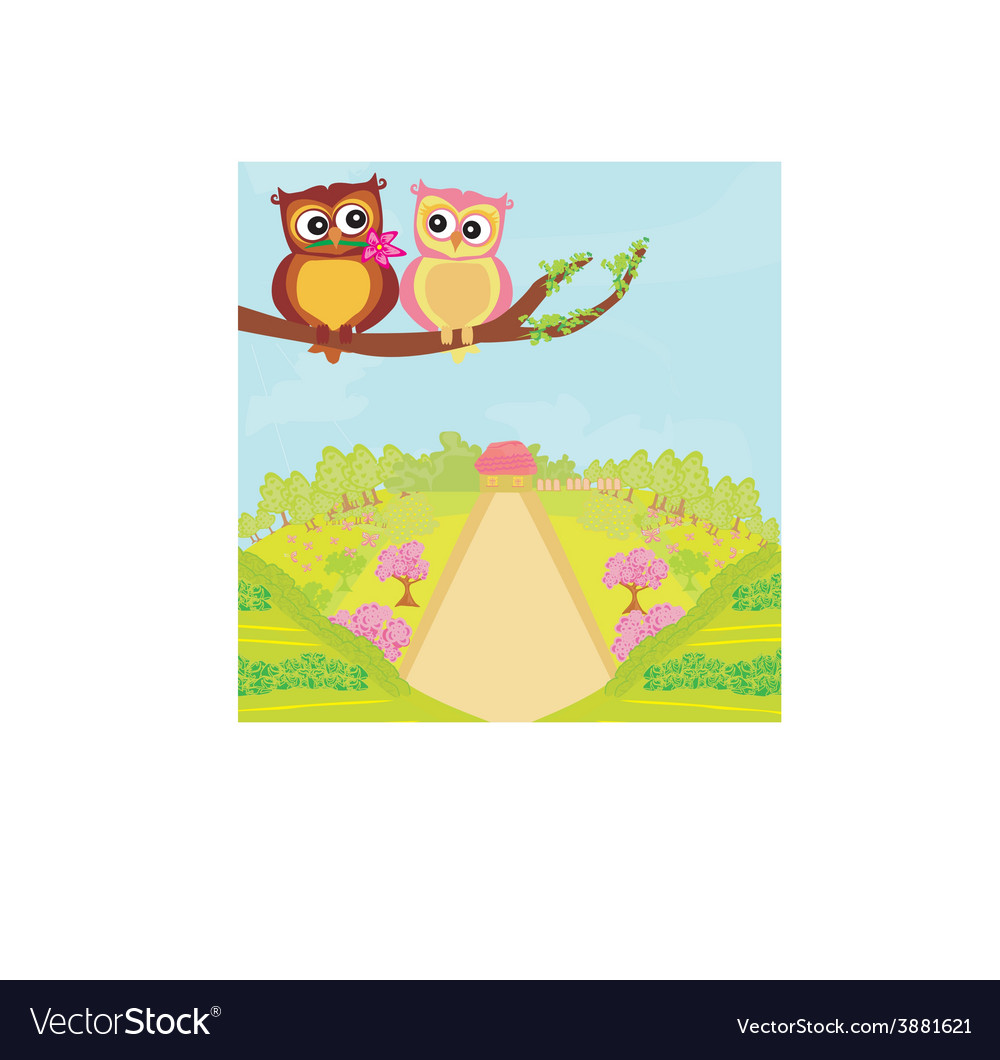 Owls in love sweet card design vector
