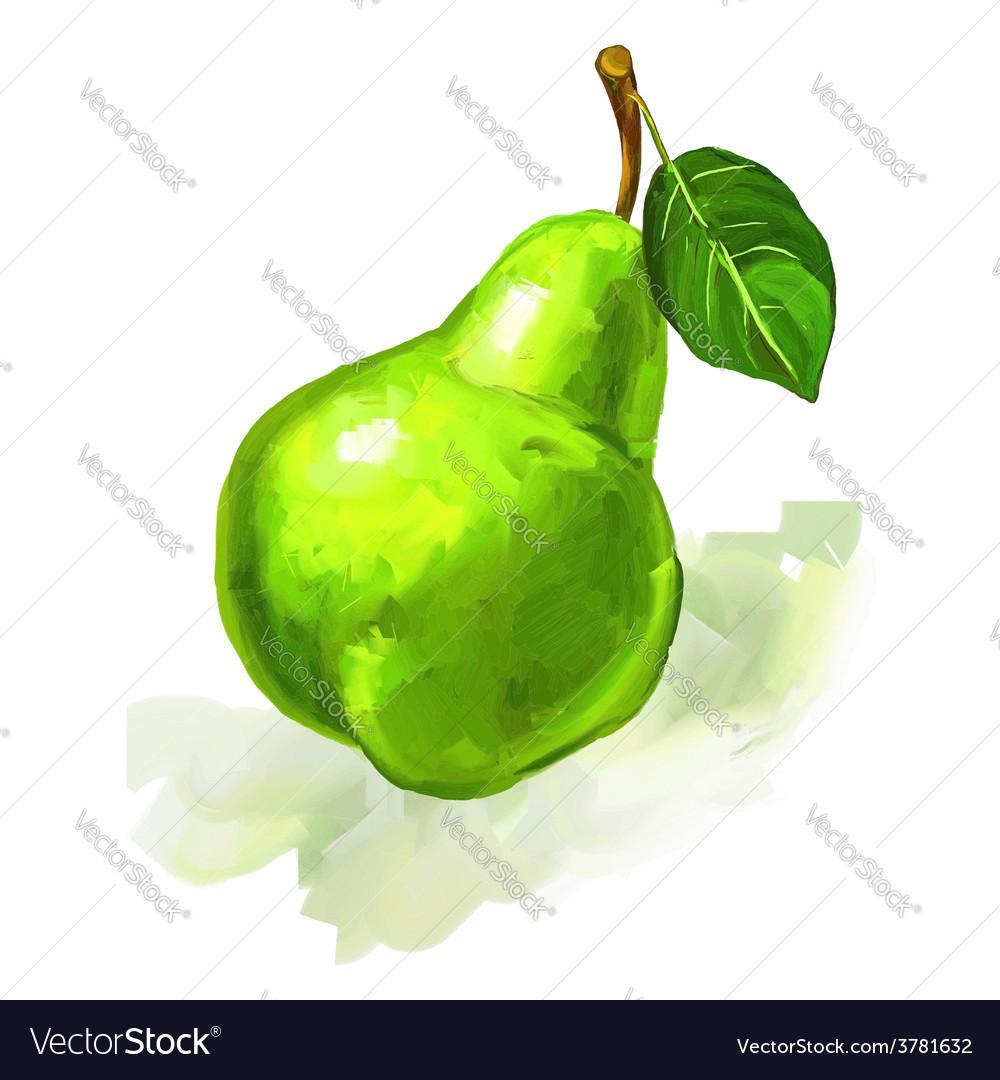 Fruit pear hand drawn vector