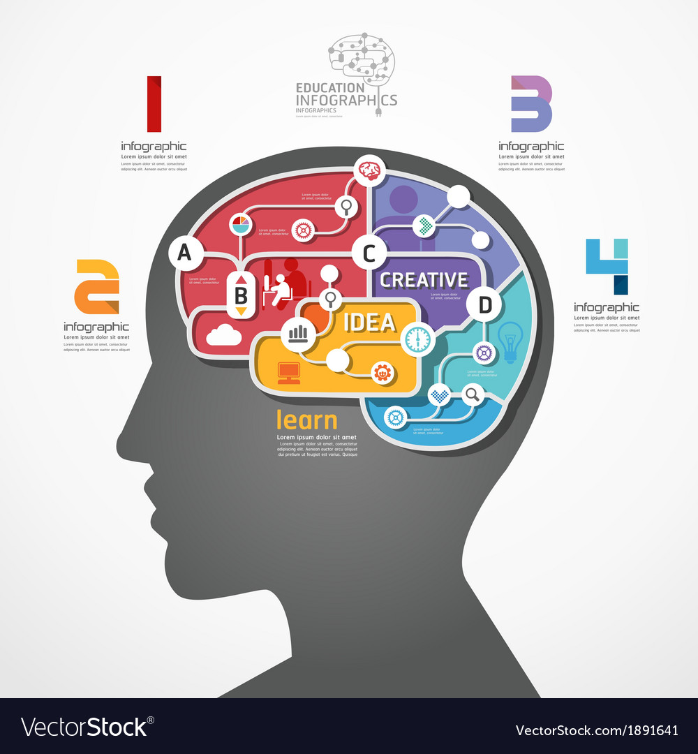 Infographic template brain social line link concep vector