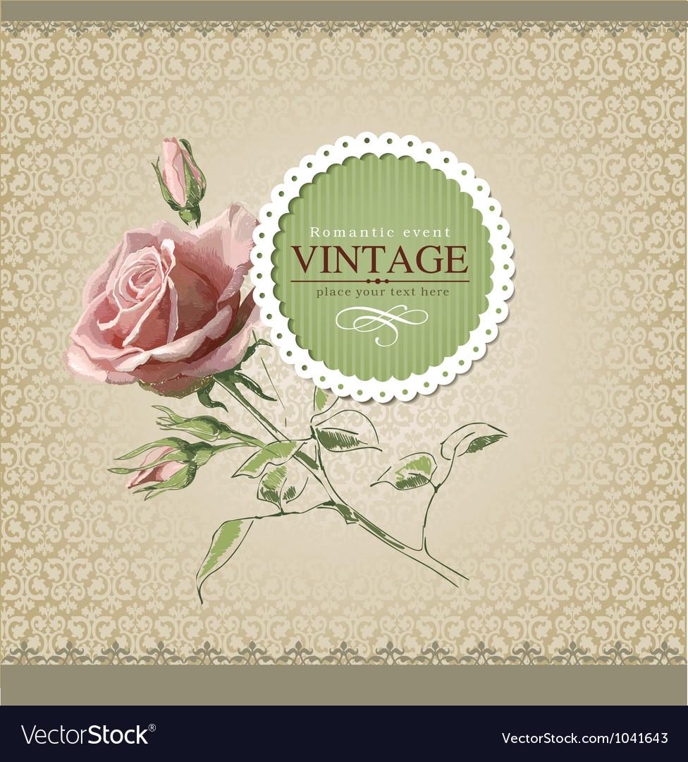Vintage border rose vector