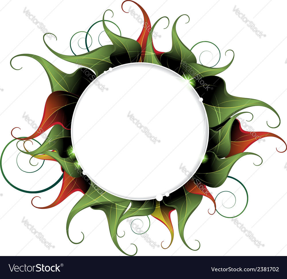Abstract curled leaves vector