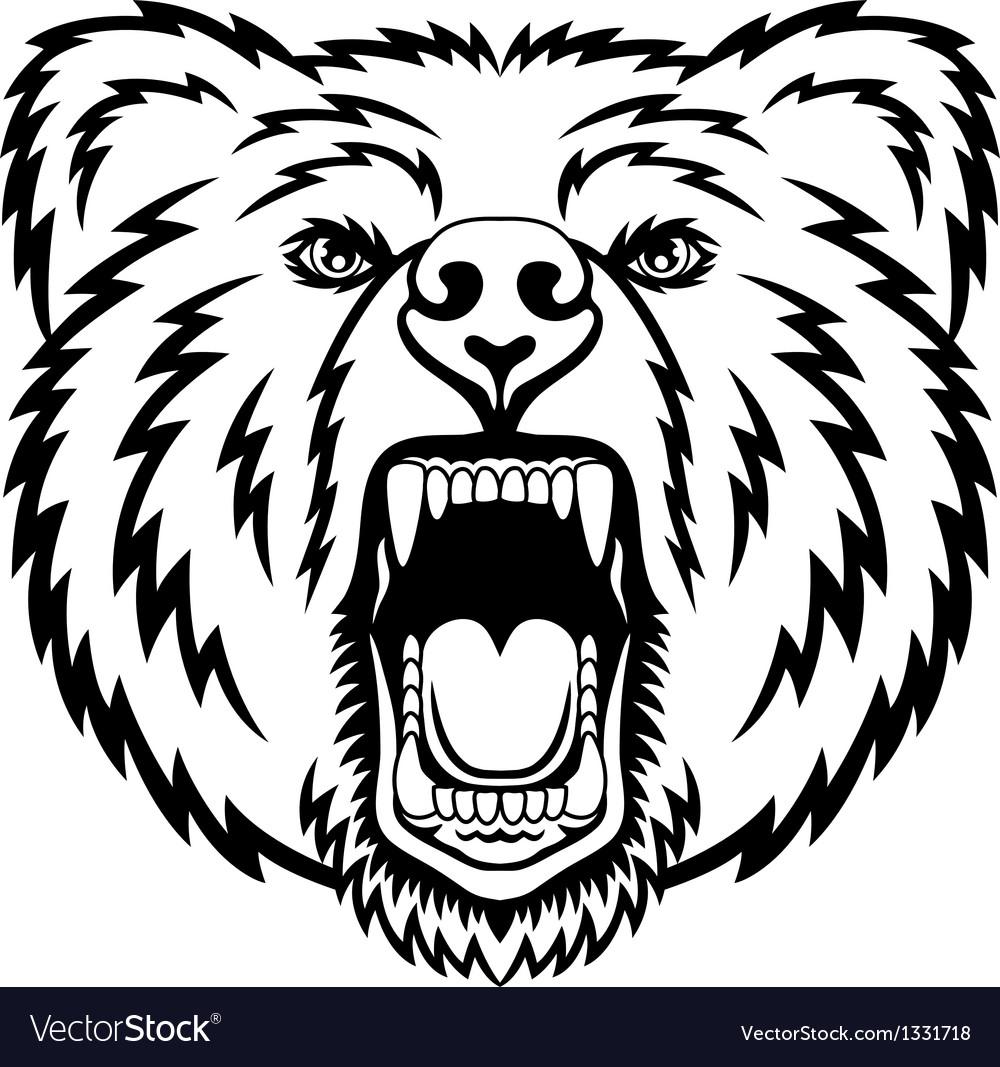 Growling bear vector
