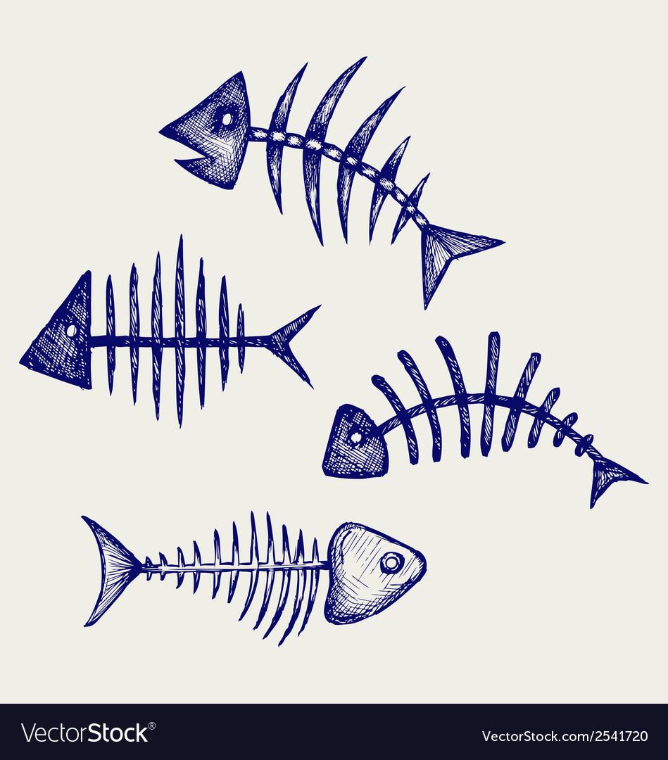 Fish bone vector
