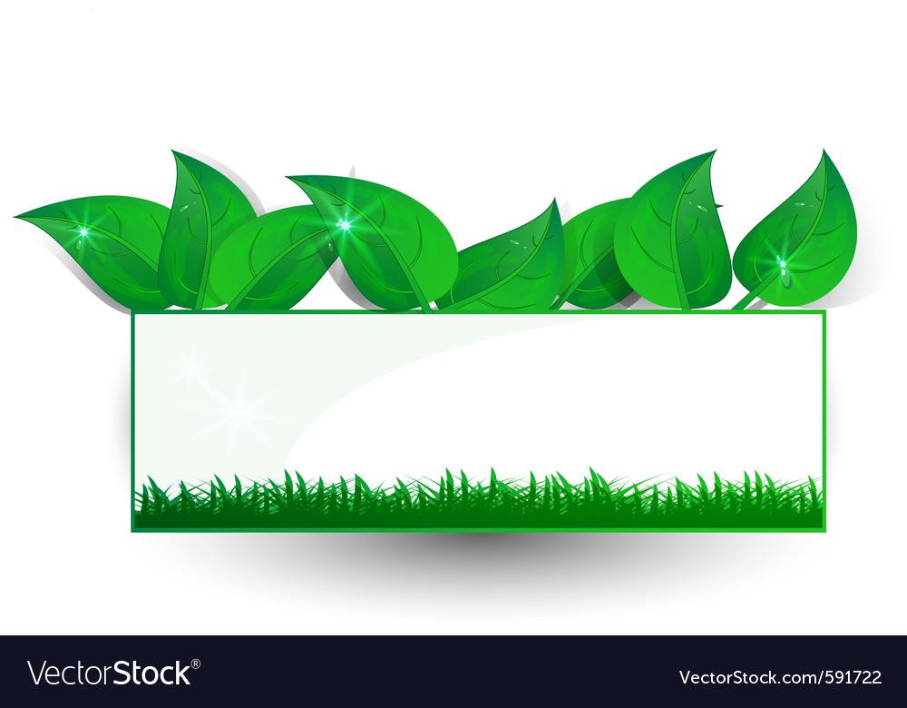 Green banner petal vector