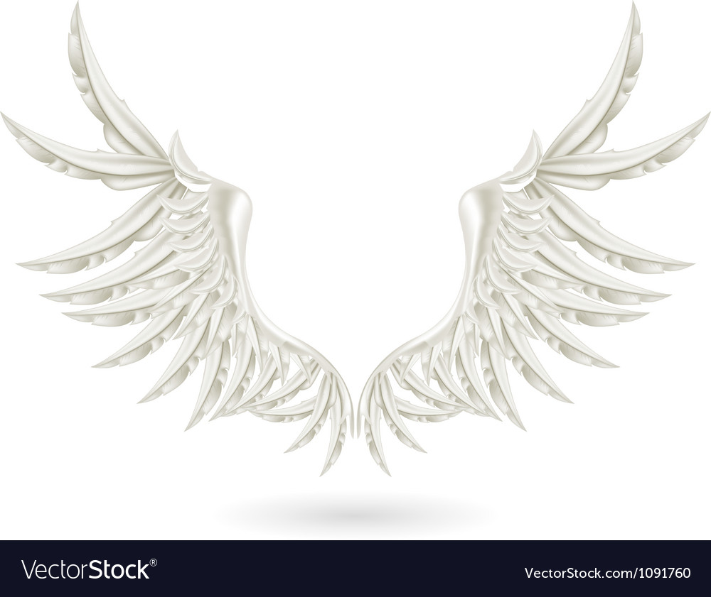White wings vector
