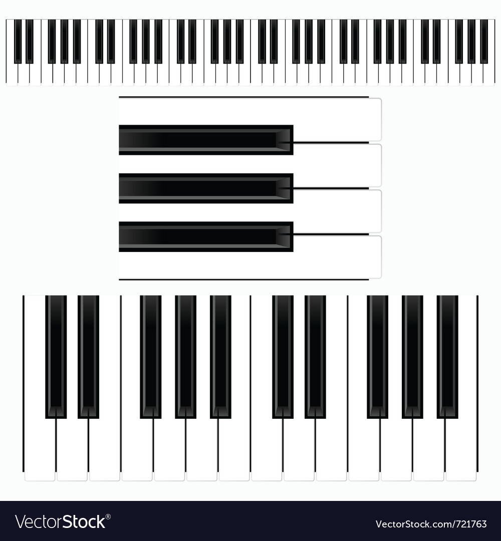 Piano keys representation vector
