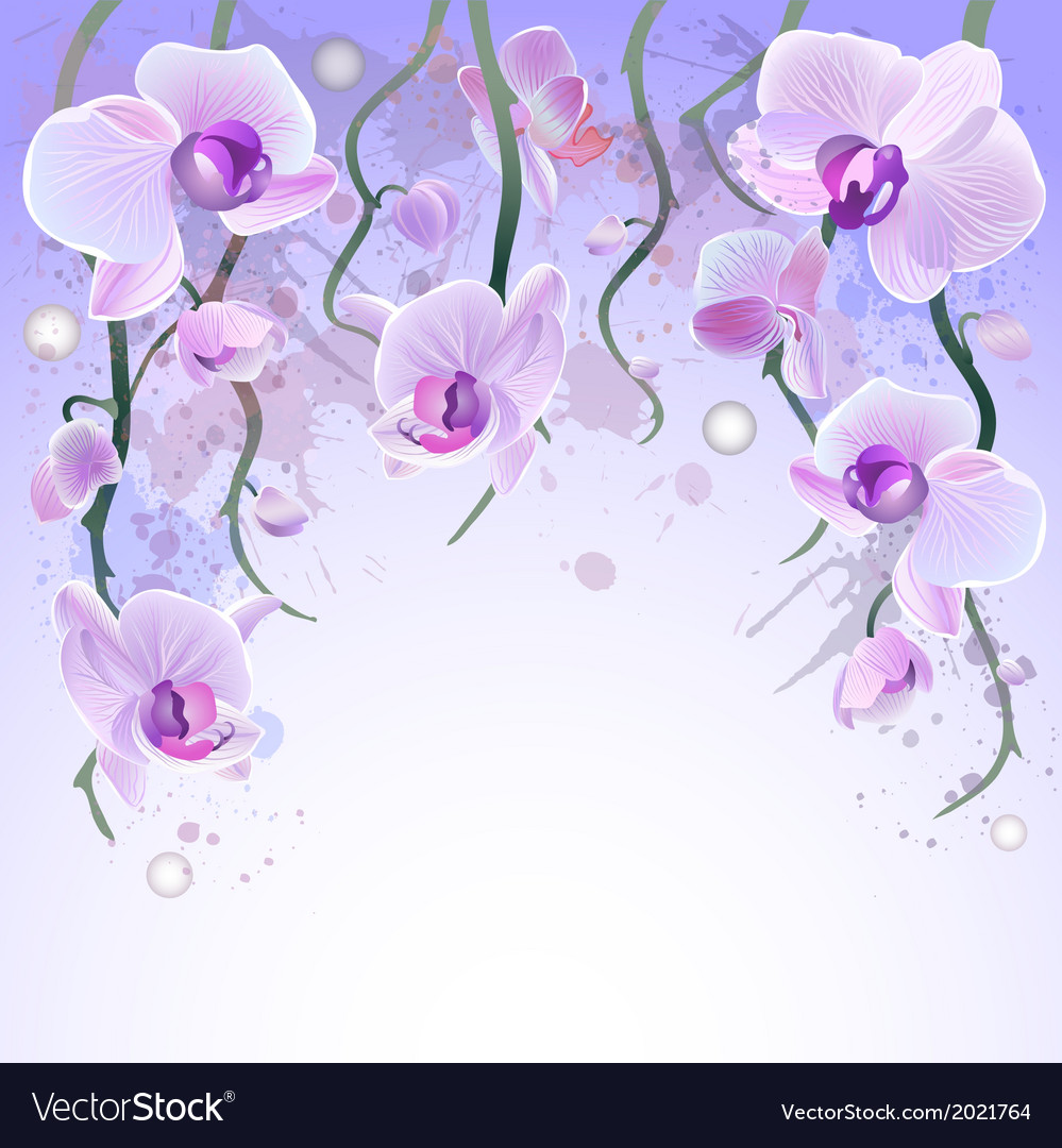 Watercolor background with orchids vector