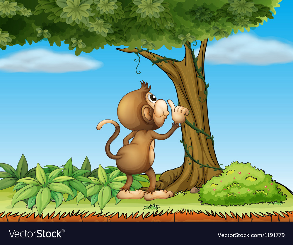 A monkey watching a tree vector