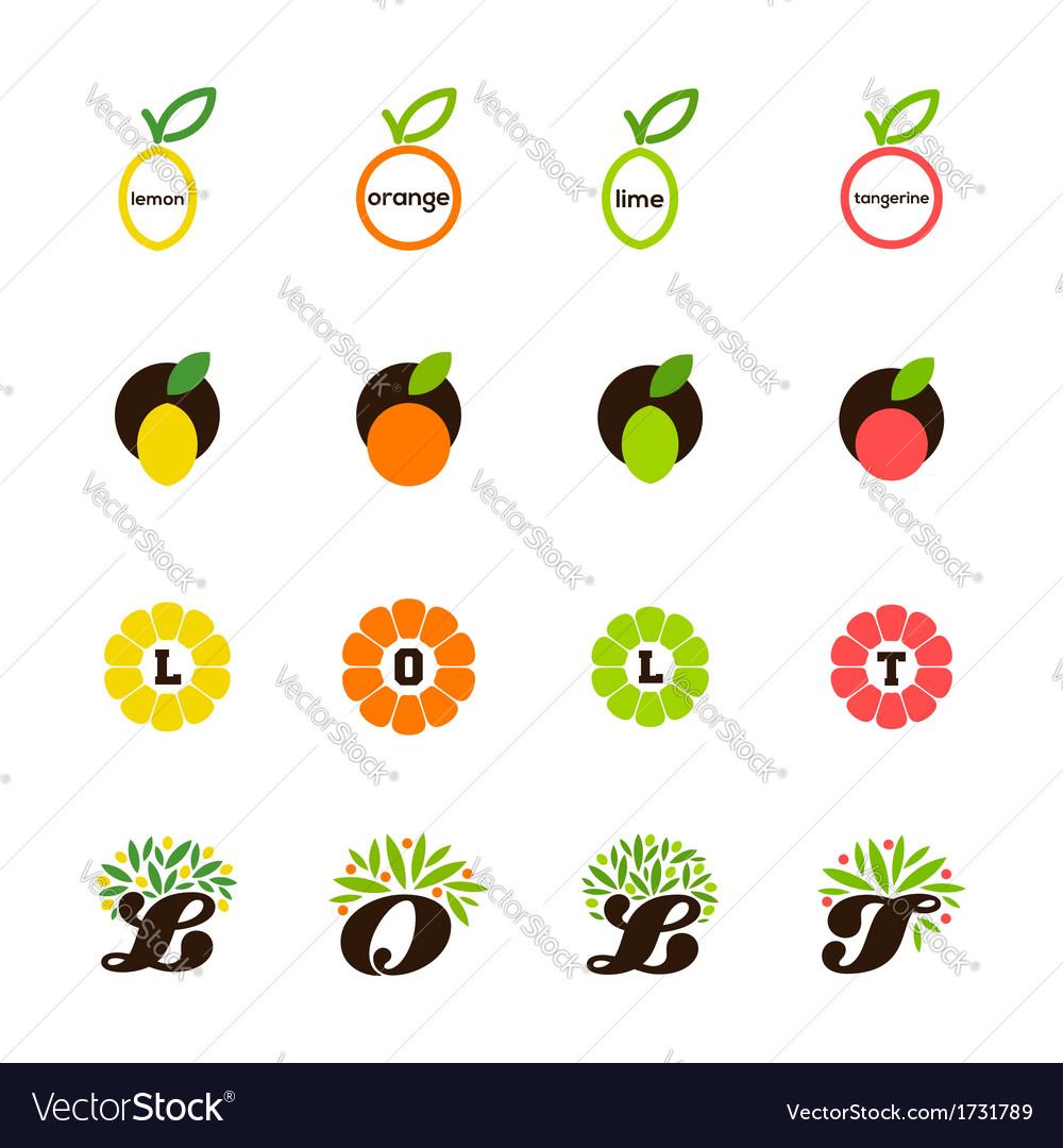 Lemon orange lime tangerine grapefruit vector
