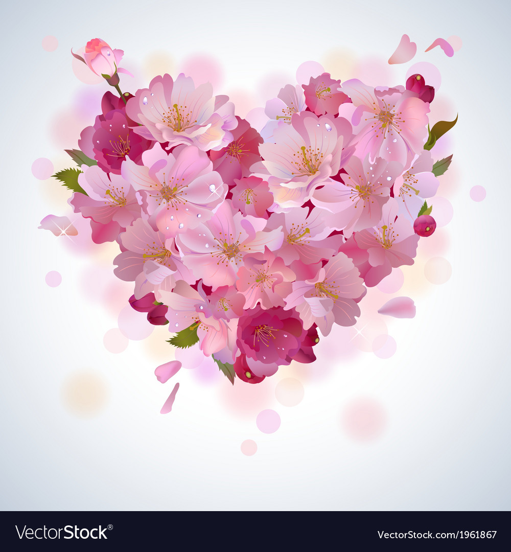 Background with cherry petal heart vector