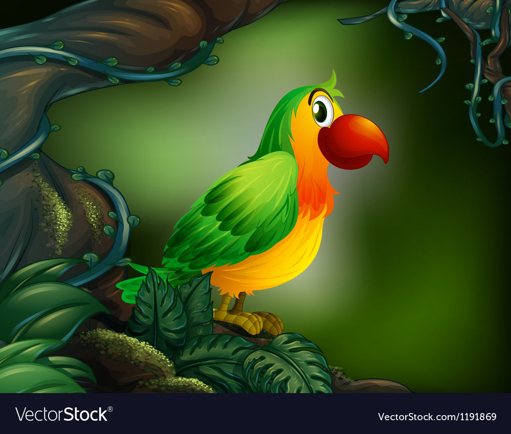 A parrot at the rain forest vector