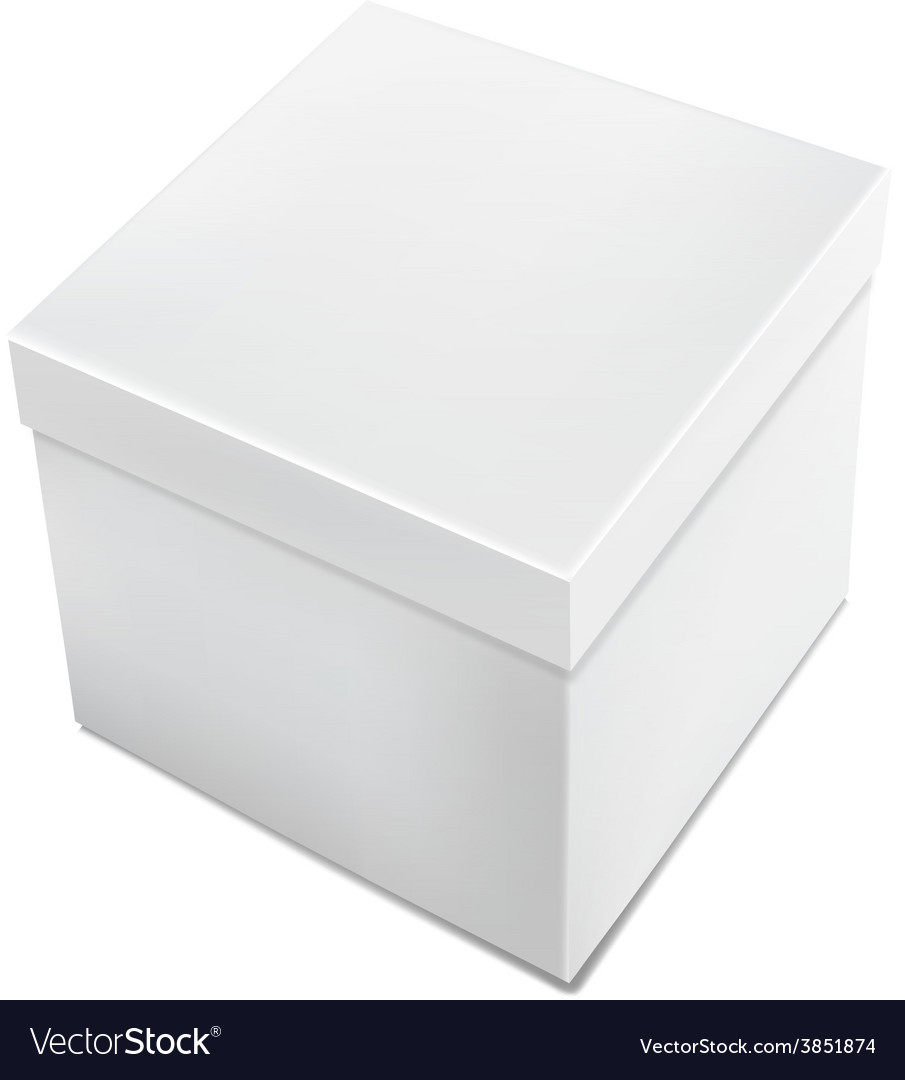 3d realistic white packaging box isolated vector
