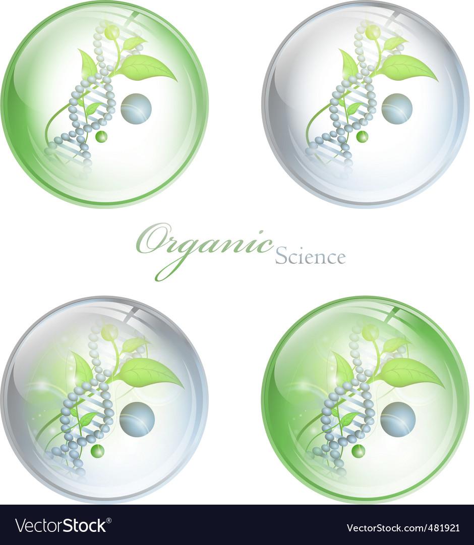 Organic science balls vector