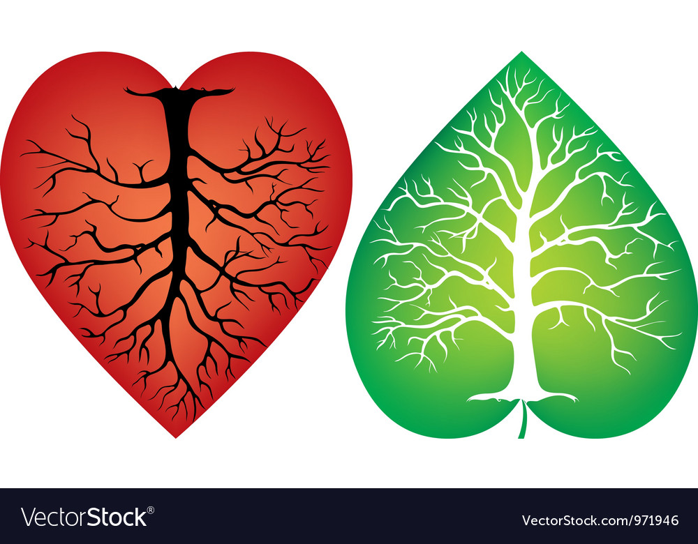 Abstract tree trunk with the symbol of the heart vector