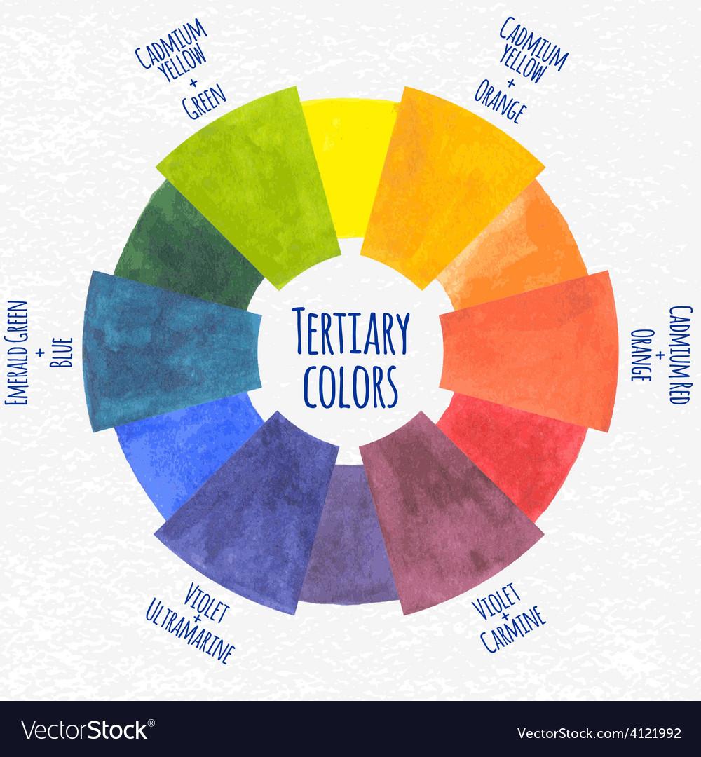 Watercolor tertiary colors chart vector