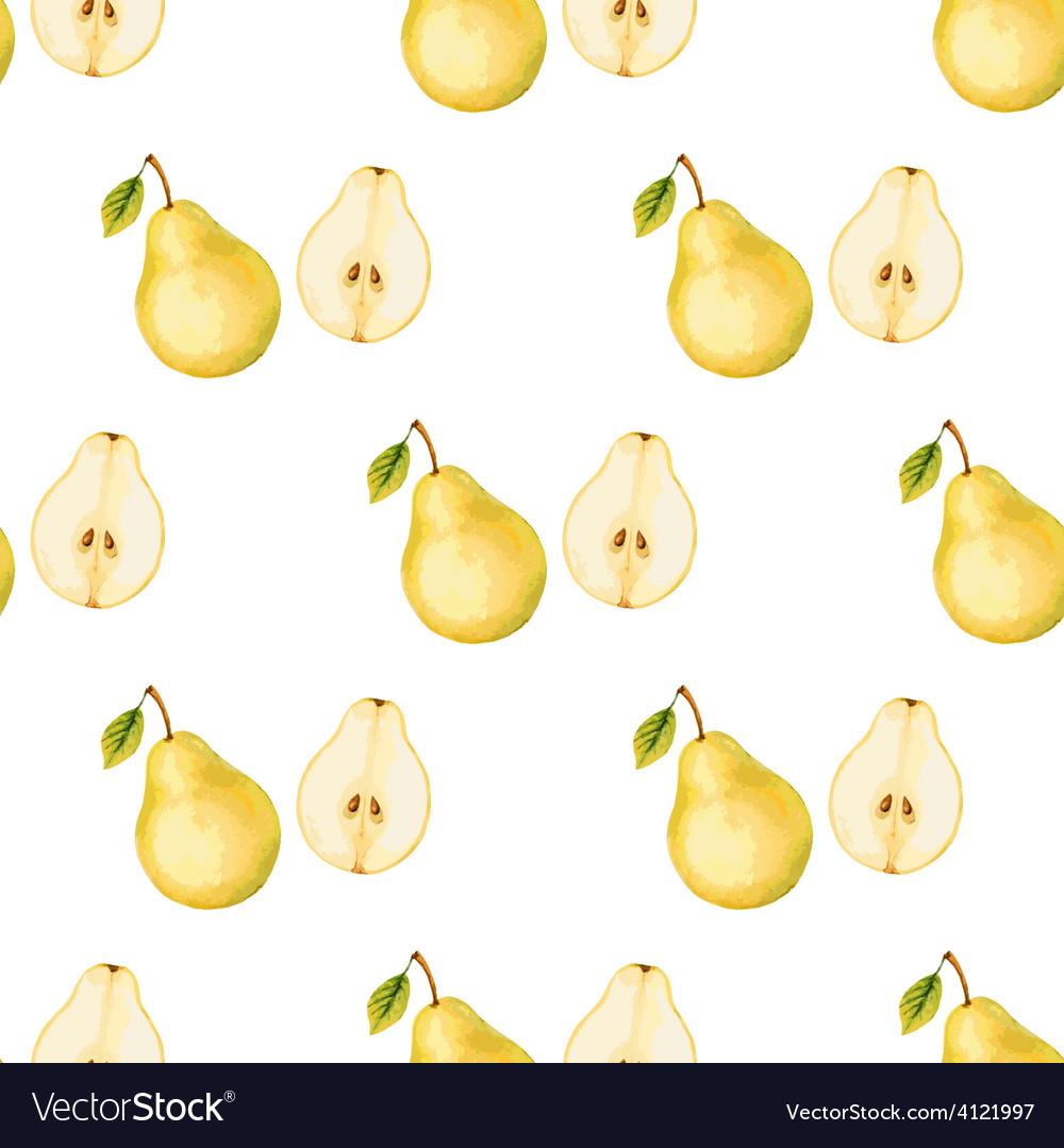 Watercolor pattern of fruit pear vector