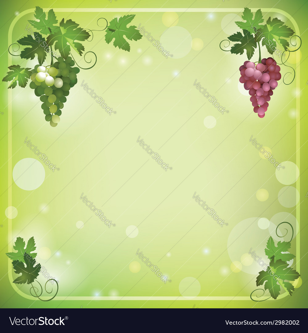 Bright green background with grapes vector