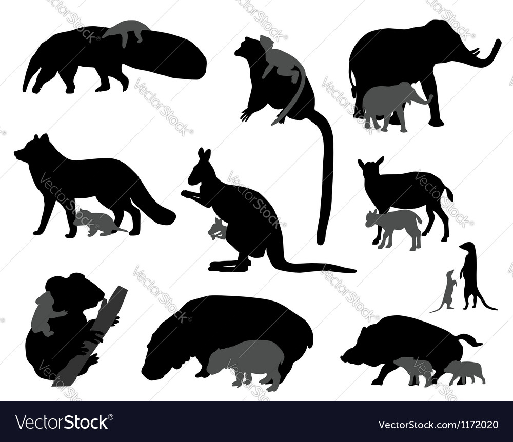 Animal kids vector