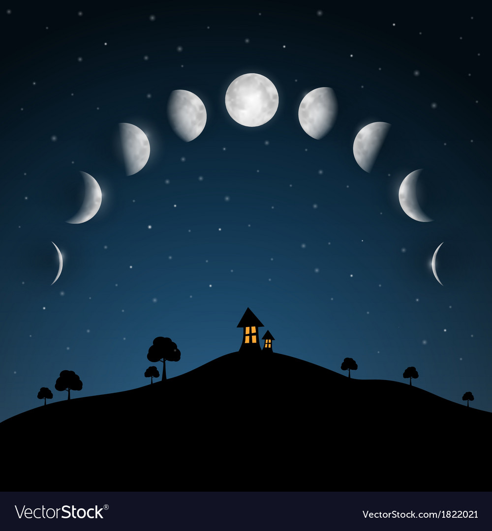 Moon phases night landscape with trees and house vector