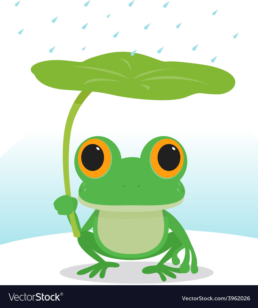 Frog in the rain vector
