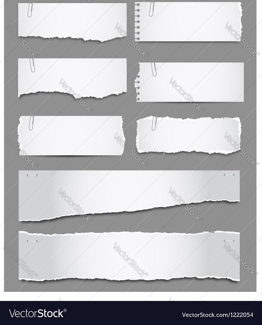 Torn paper vector