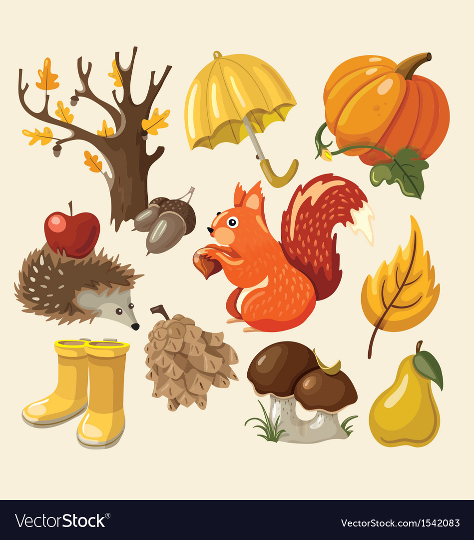 Set of elements and items that represent autumn vector