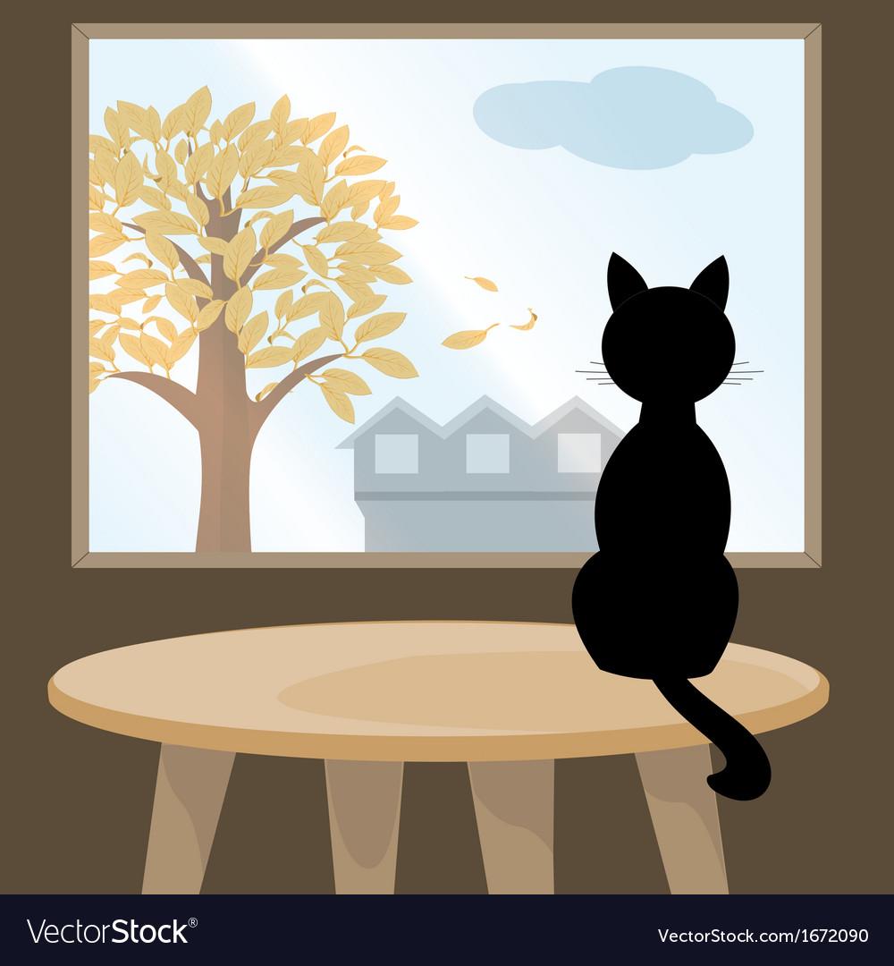 Black cat at window vector