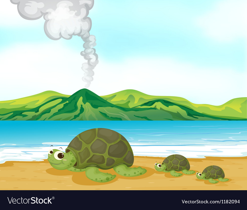 Cartoon beach turtles vector