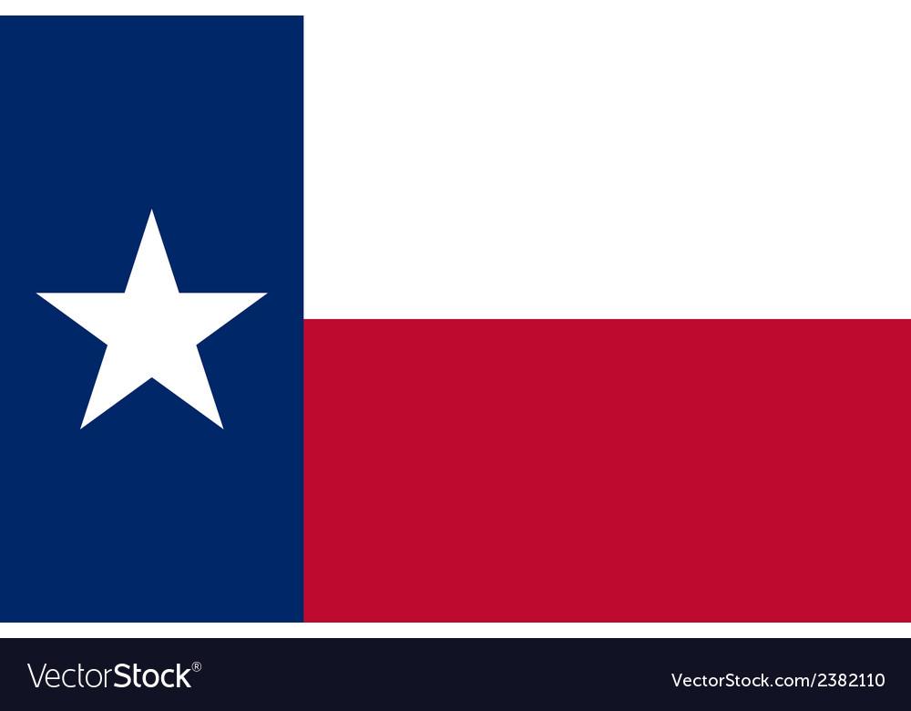 Flag of texas vector
