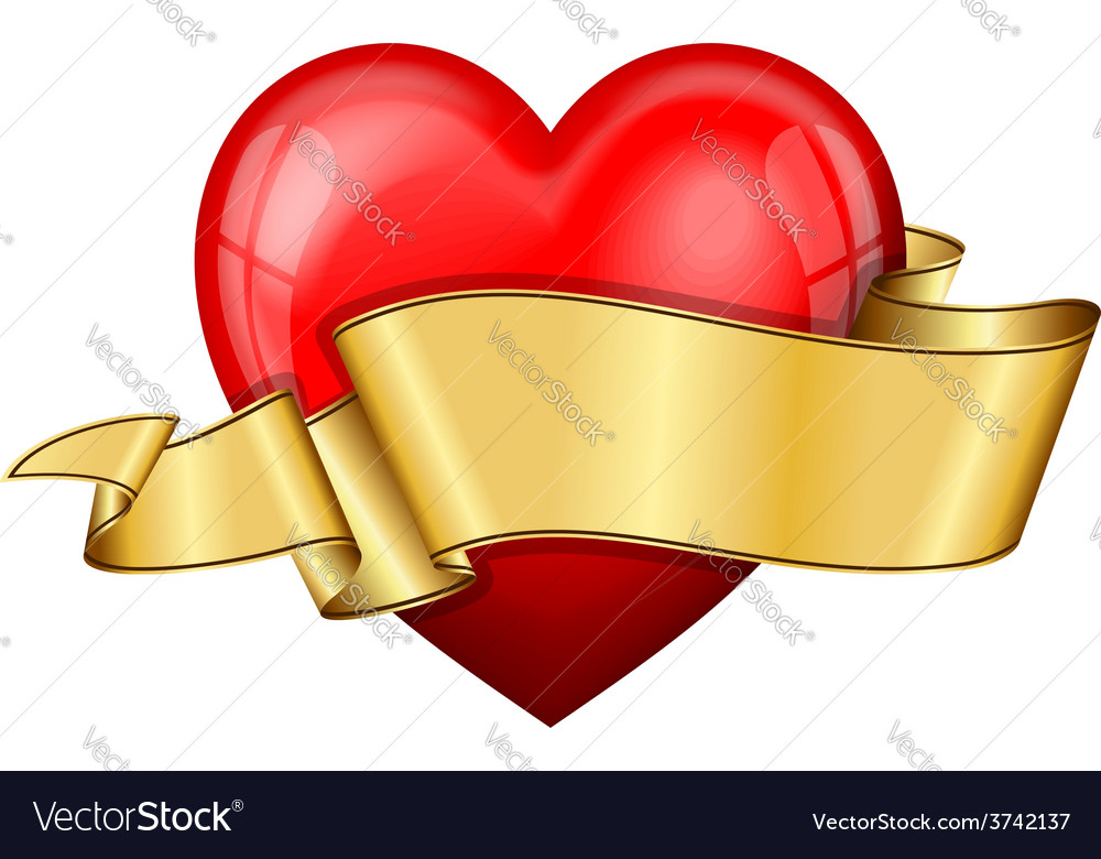 Heart with ribbon vector