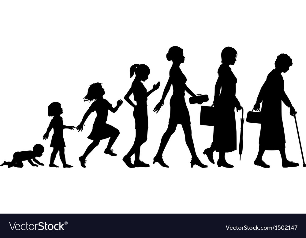 Ages of woman vector