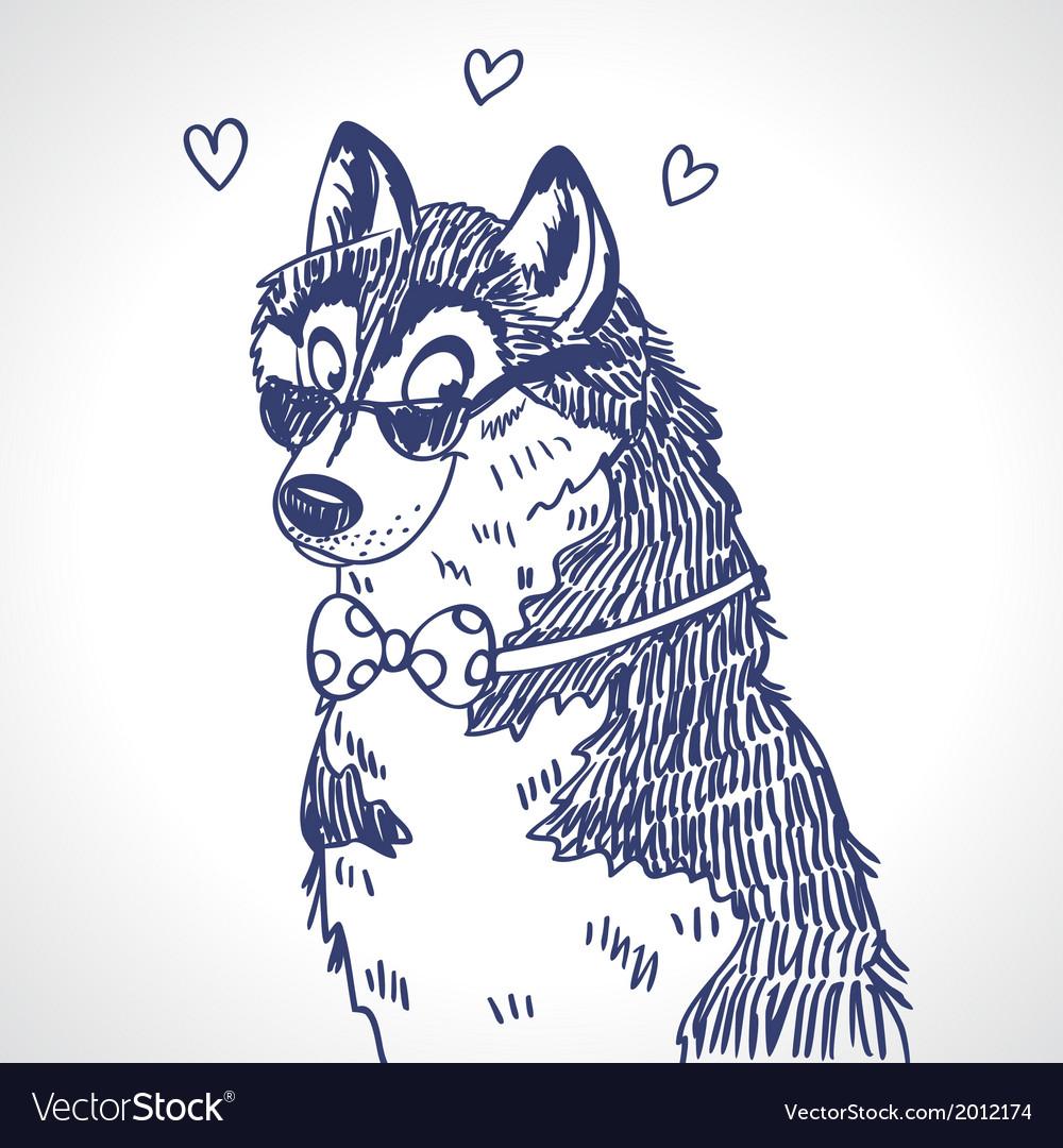 Husky sketch vector