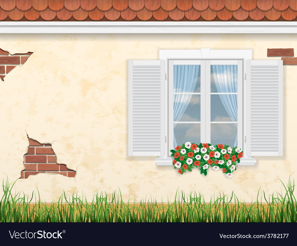 Window on the old wall vector