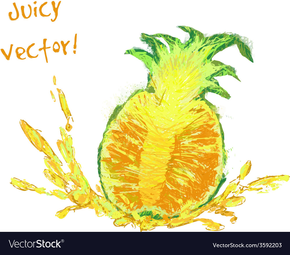 Drawing slice of pineapple vector