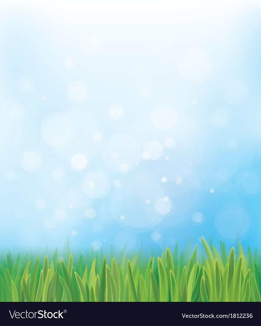 Grass sky background vector