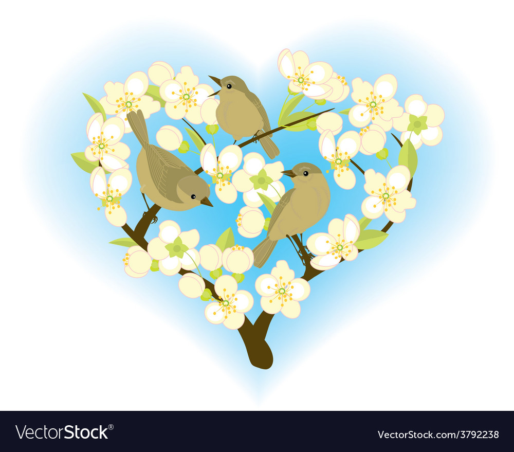 Birds on flowering branches vector