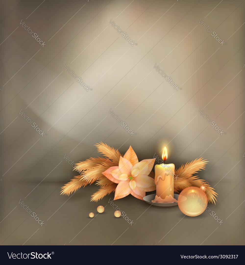 Christmas celebration background vector