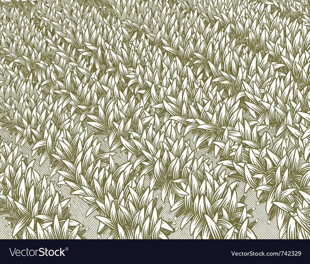 Row of plants vector